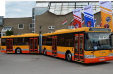 Сочлененные автобусы