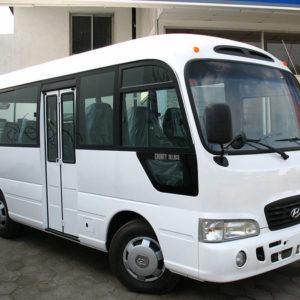 Автобусы Hyundai: модельный ряд