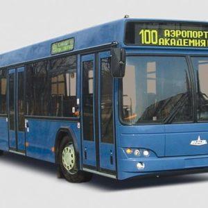 Автобусы МАЗ: модельный ряд