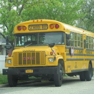 Американские автобусы школьные
